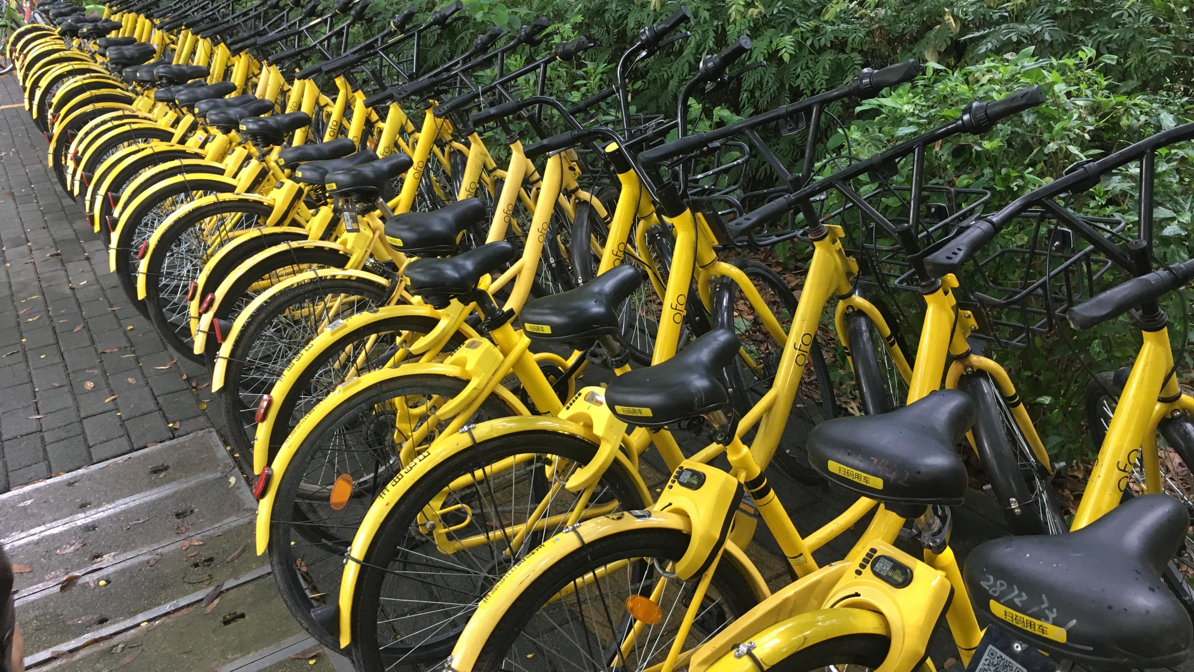 Empresas chinas de bicicletas de alquiler preparan su arribo a México