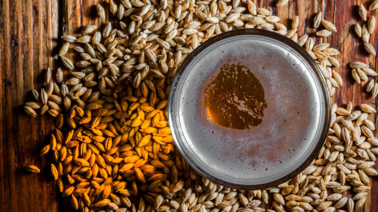 La malta, punto de partida para fabricar cerveza