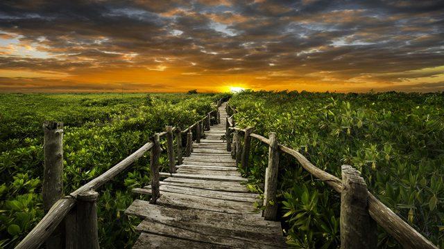 Naturaleza, Pepe Soho, fotografía