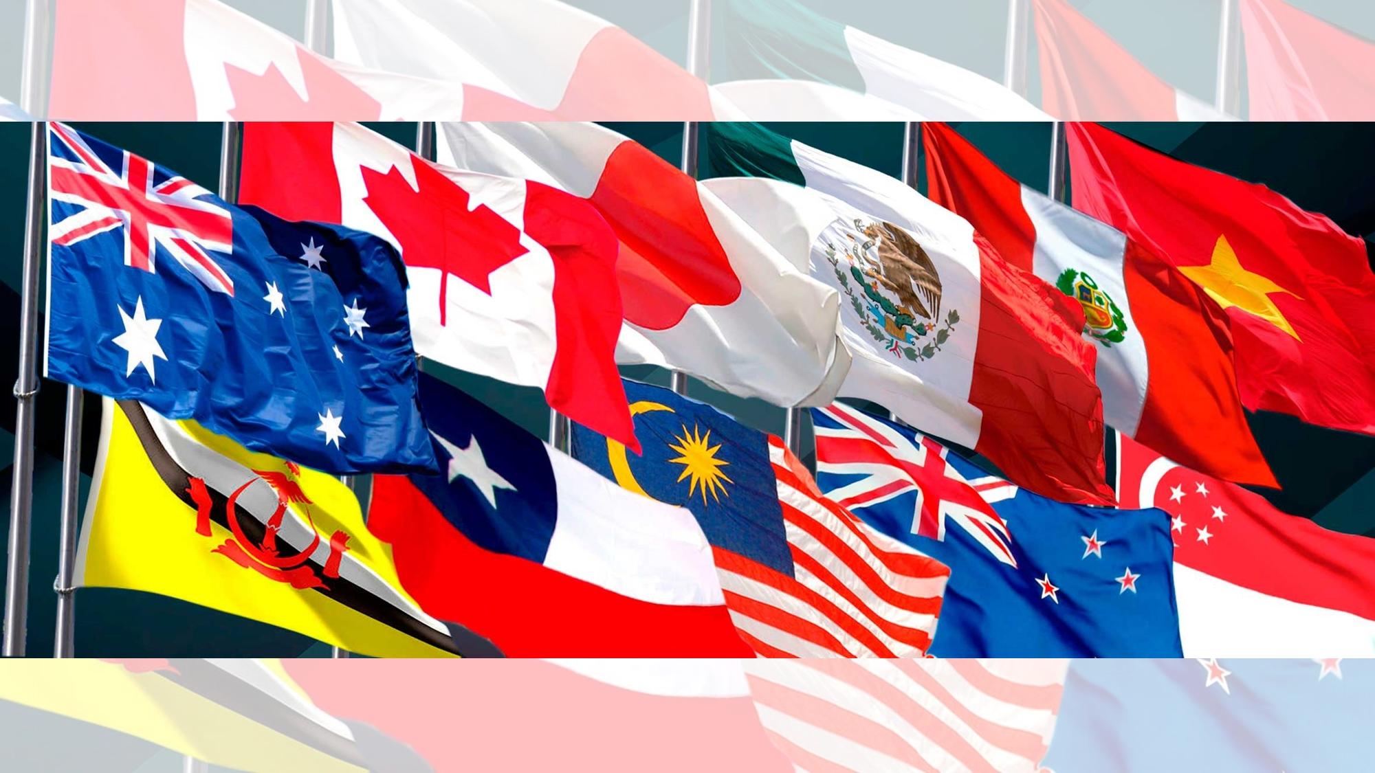 Tratado transpacífico deja fuera las exigencias de Estados Unidos