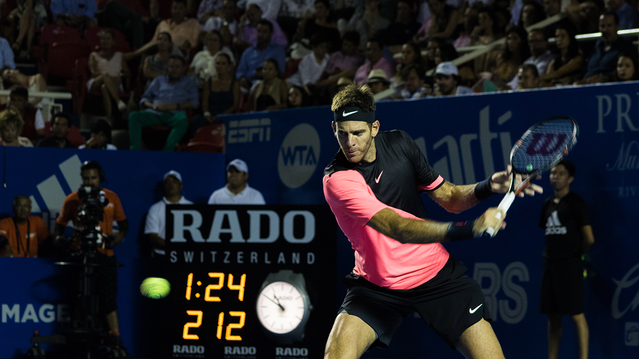 Abierto Mexicano de Tenis, tenis, Juan Martín del Potro, Acapulco