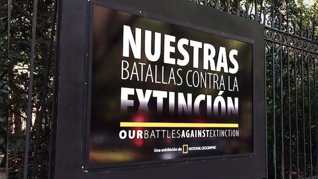 Nuestras batallas contra la extinción, National Geographic, Conabio
