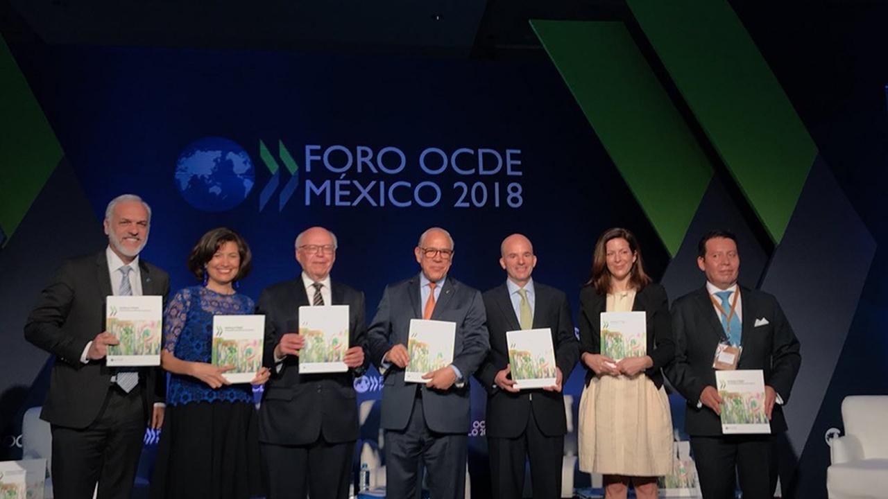 OCDE recomienda a México más reformas estructurales