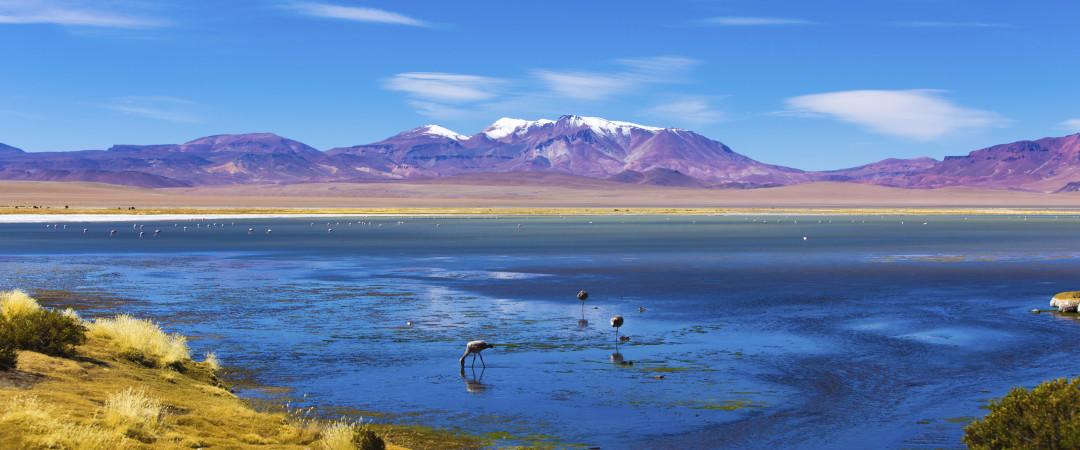 Vive una aventura en Atacama, un oasis en el desierto chileno