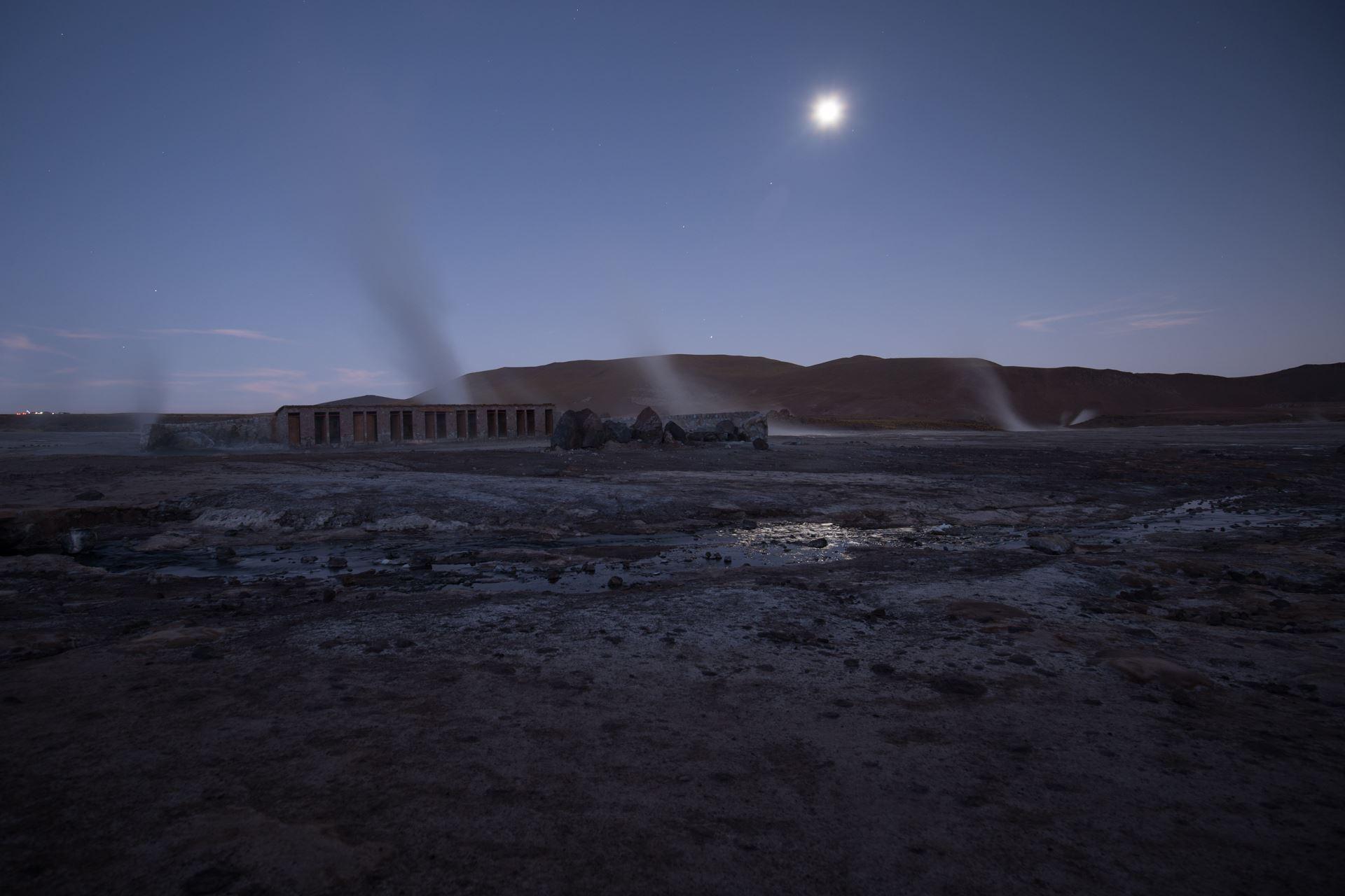 Atacama oasis