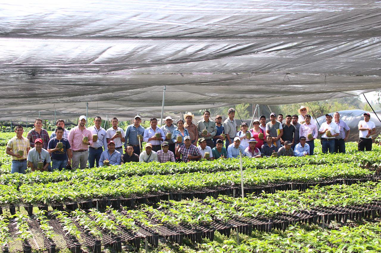Guatemala impulsa iniciativa para combatir el hambre