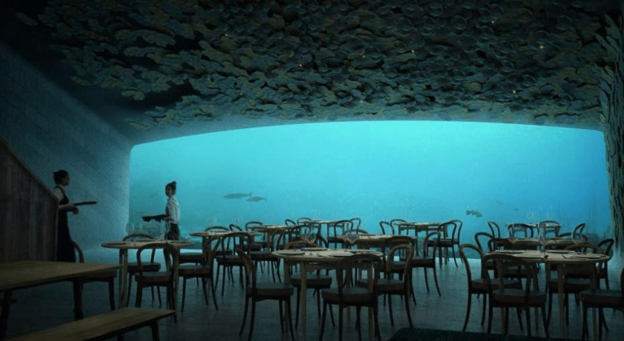 restaurante, Noruega, mar, Under