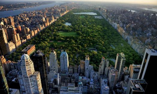 New York, verano, campamento