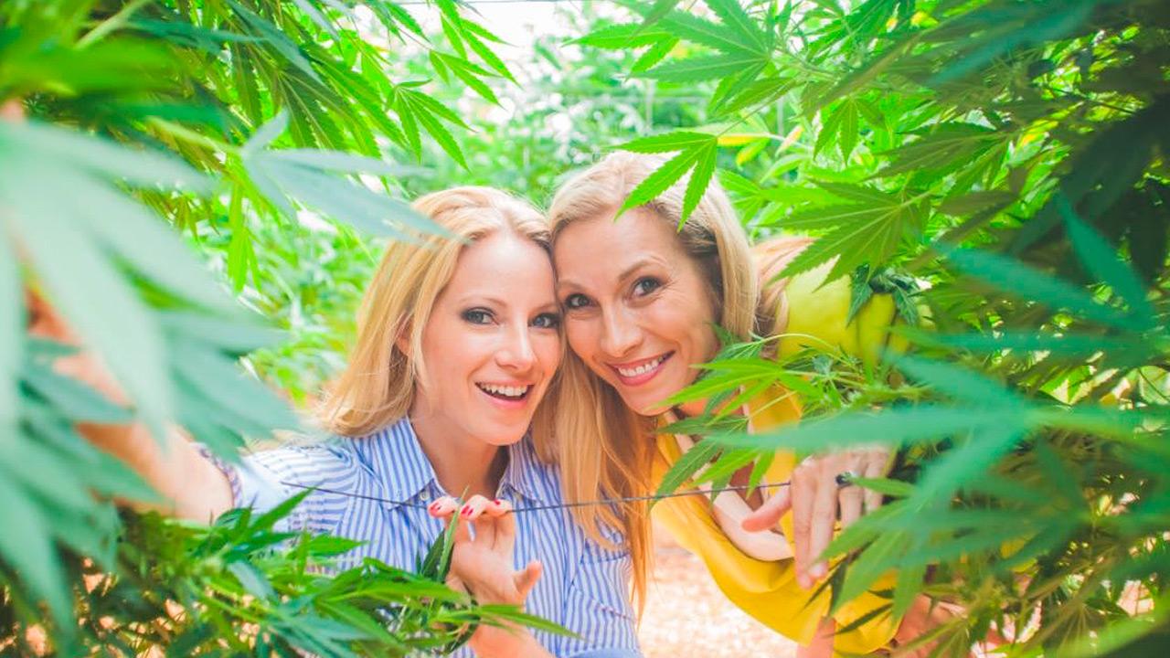 Consejos de la reina del cannabis medicinal para iniciar un negocio