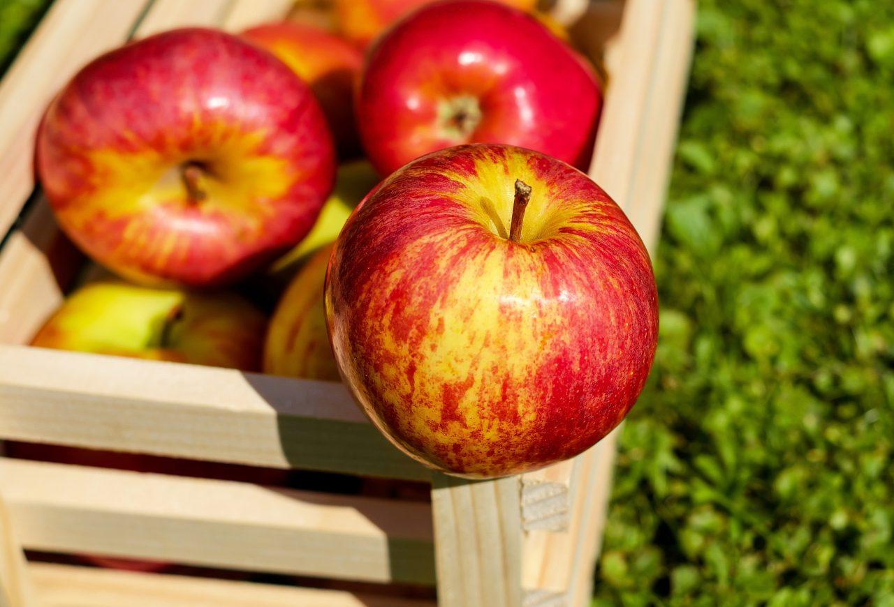 Precio de manzana estadounidense aumentará en México tras arancel