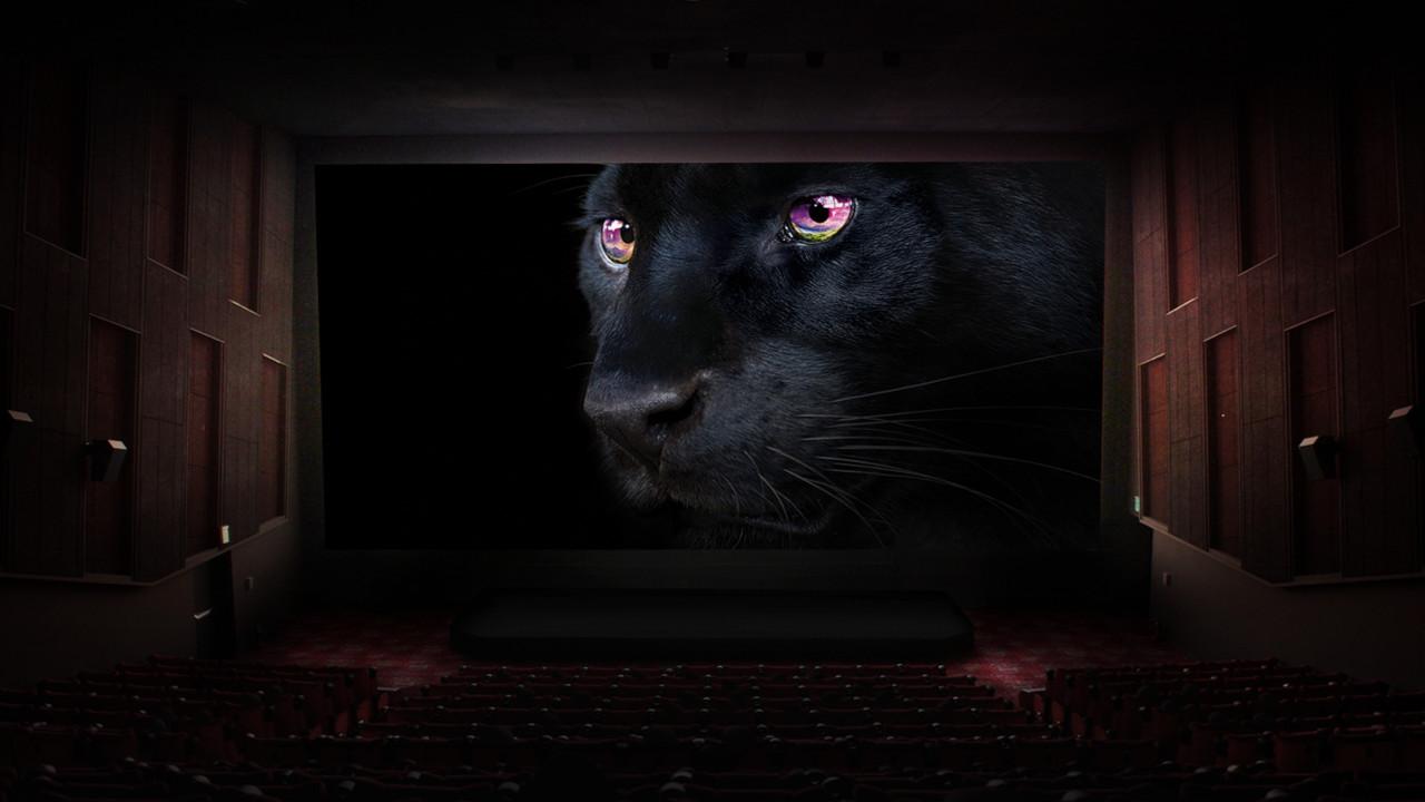 Cerrar los ojos, despertar el universo: este es el origen de la OLED TV de LG