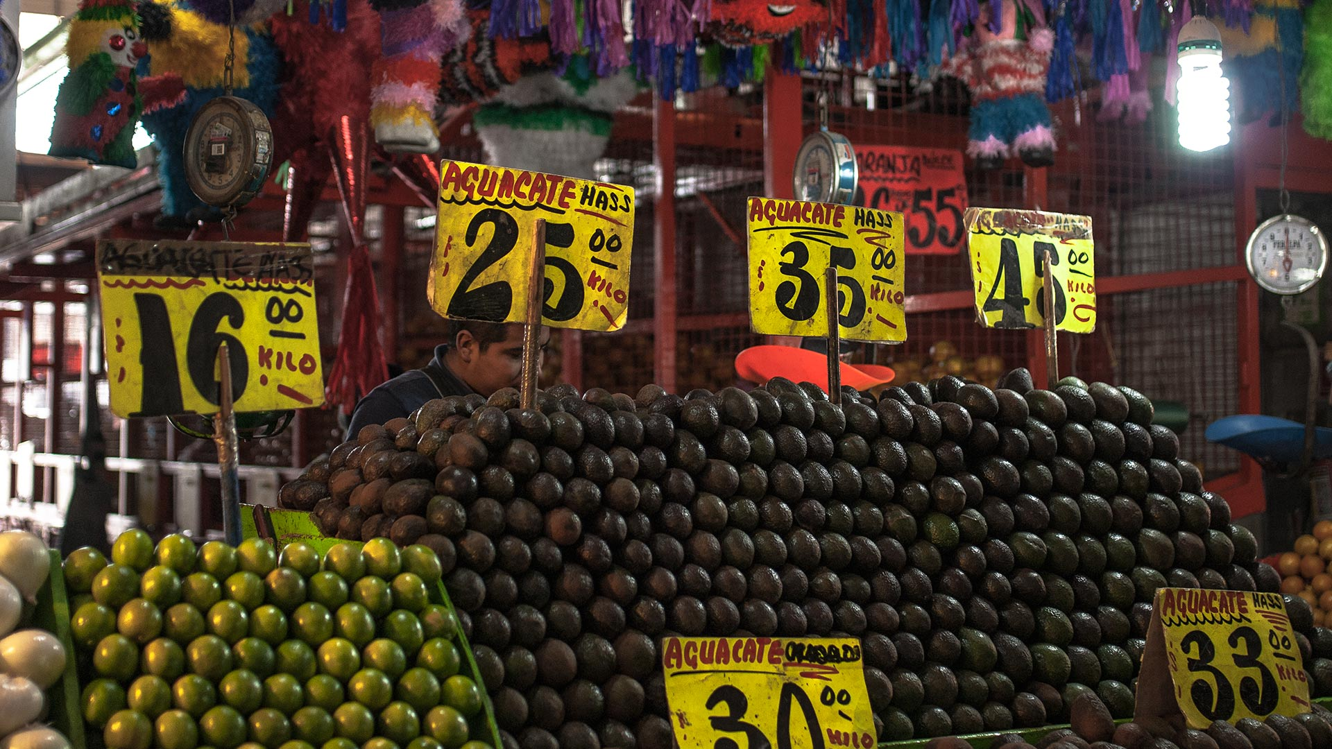 Fotogalería | Deforestación e ilegalidad: el sabor del aguacate