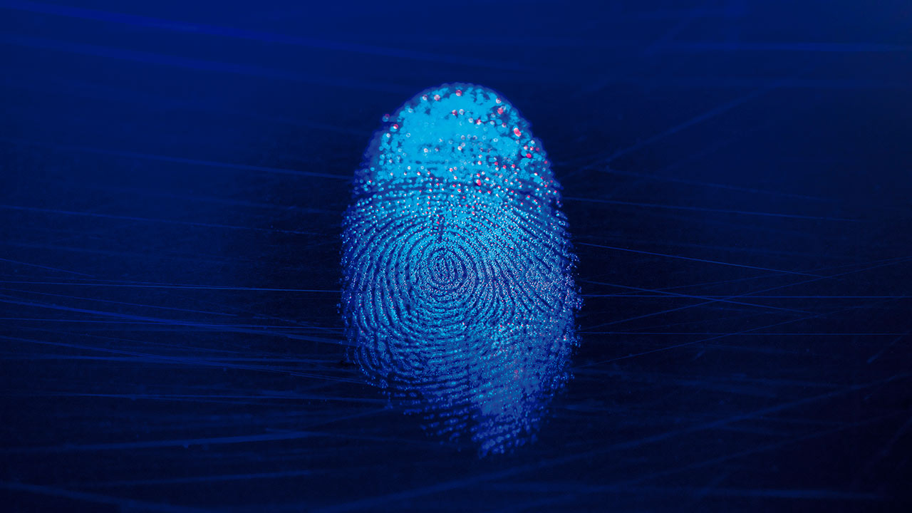 Identificación biométrica, escudo contra hackeo