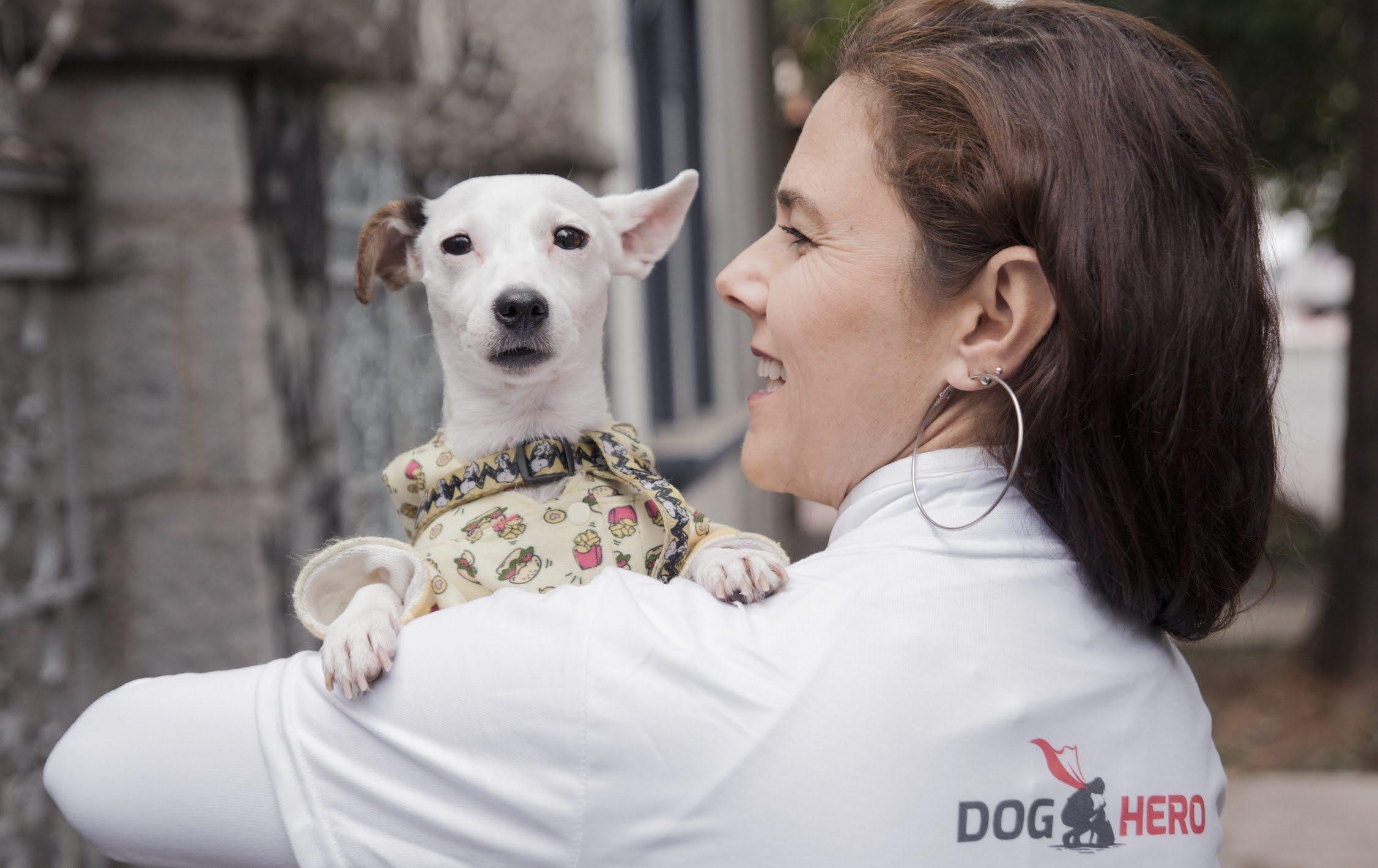 "DogHero, el ""Airbnb"" de las mascotas llega a México"