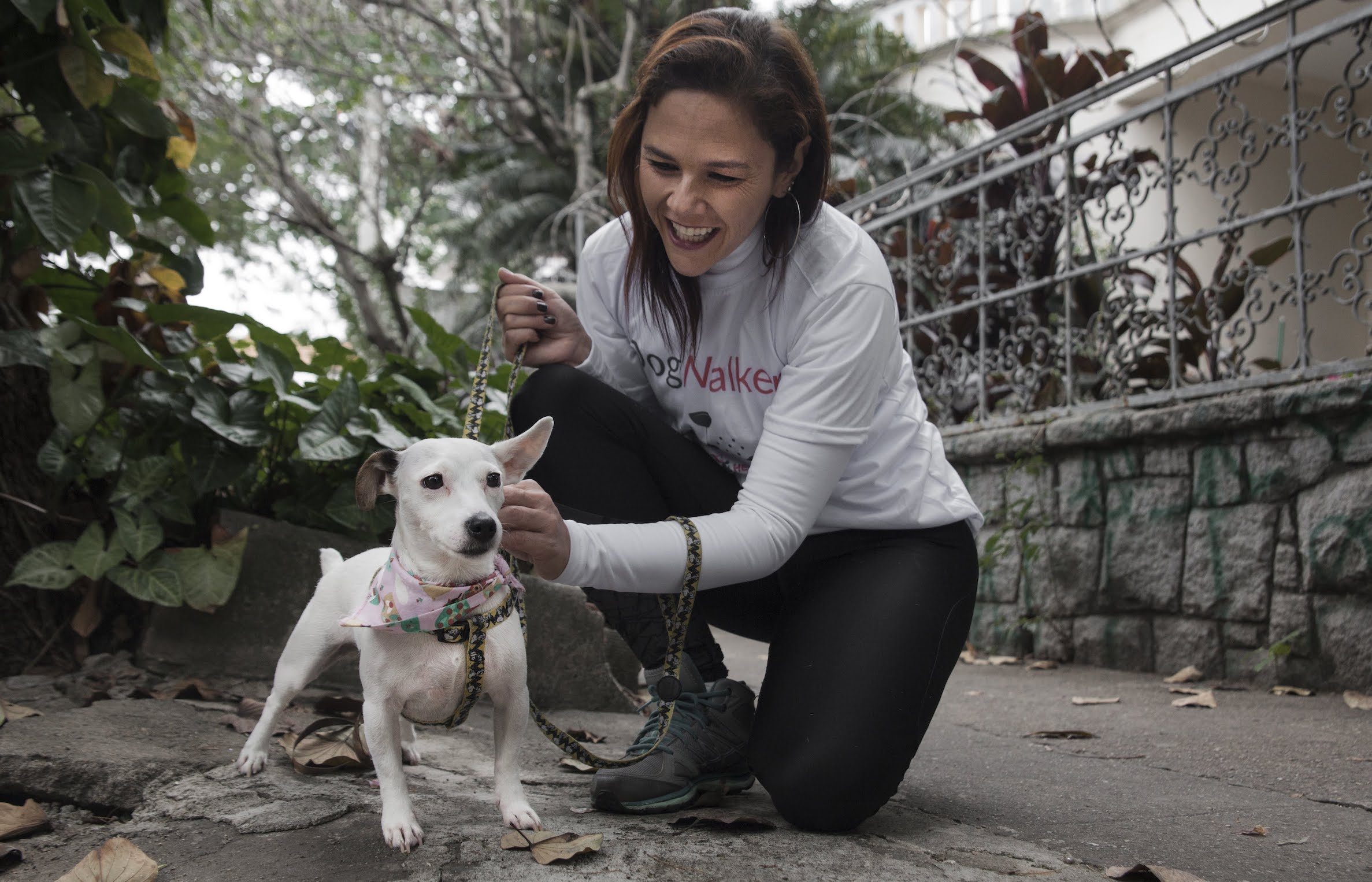 DogHero, el  'Airbnb' de las mascotas llega a México