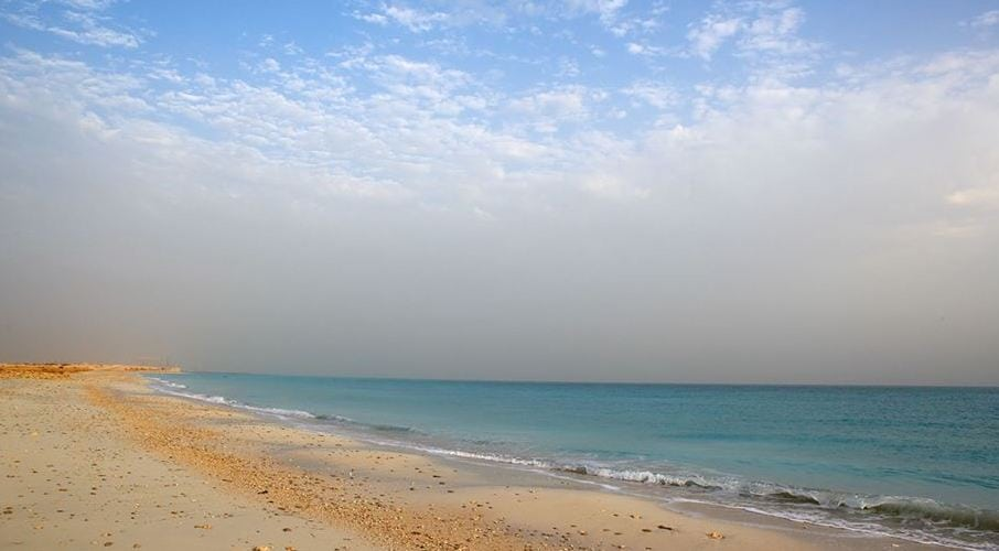 Isla Saadiyat Medio Oriente