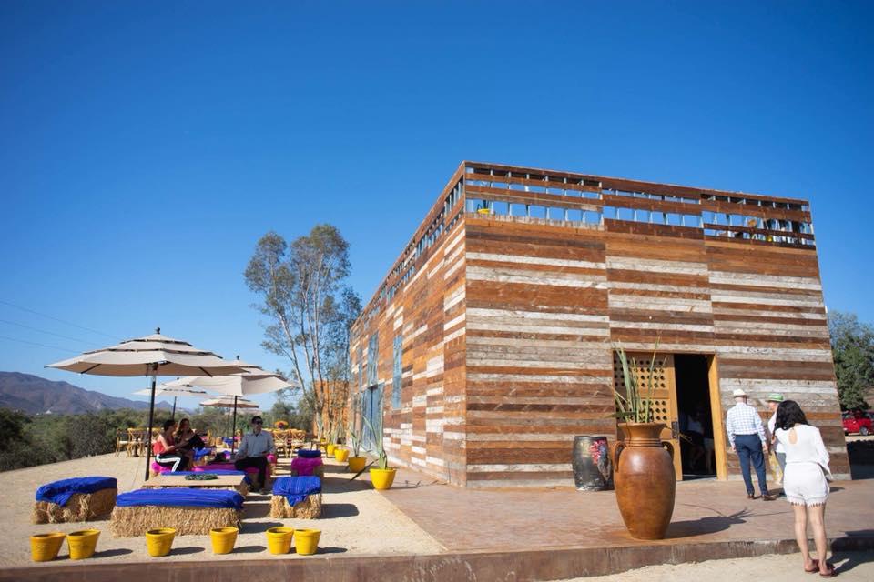 Frida Kahlo Valle de Guadalupe