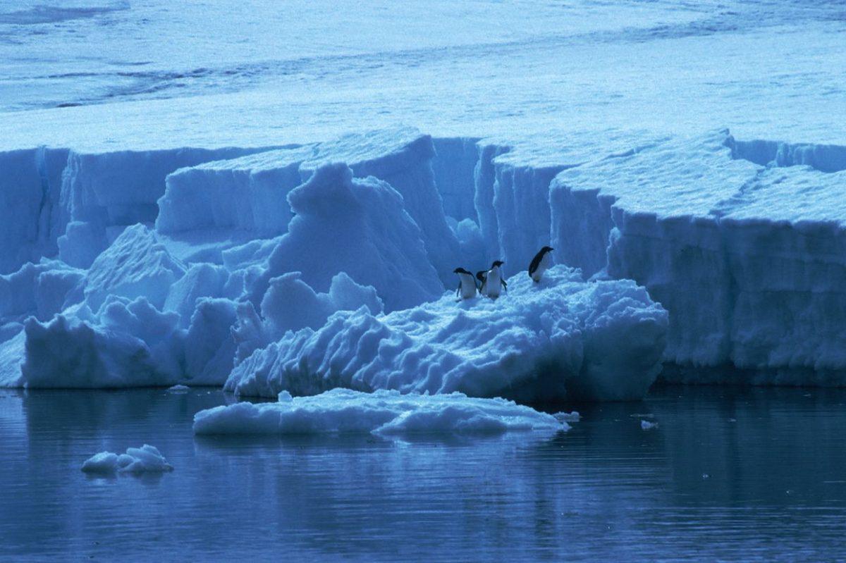 Iceberg de 300 kilómetros se desprende de la Antártida