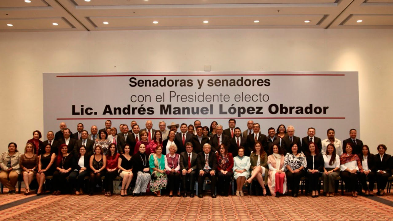 Amapola, seguridad y austeridad en agenda de Morena en el Senado