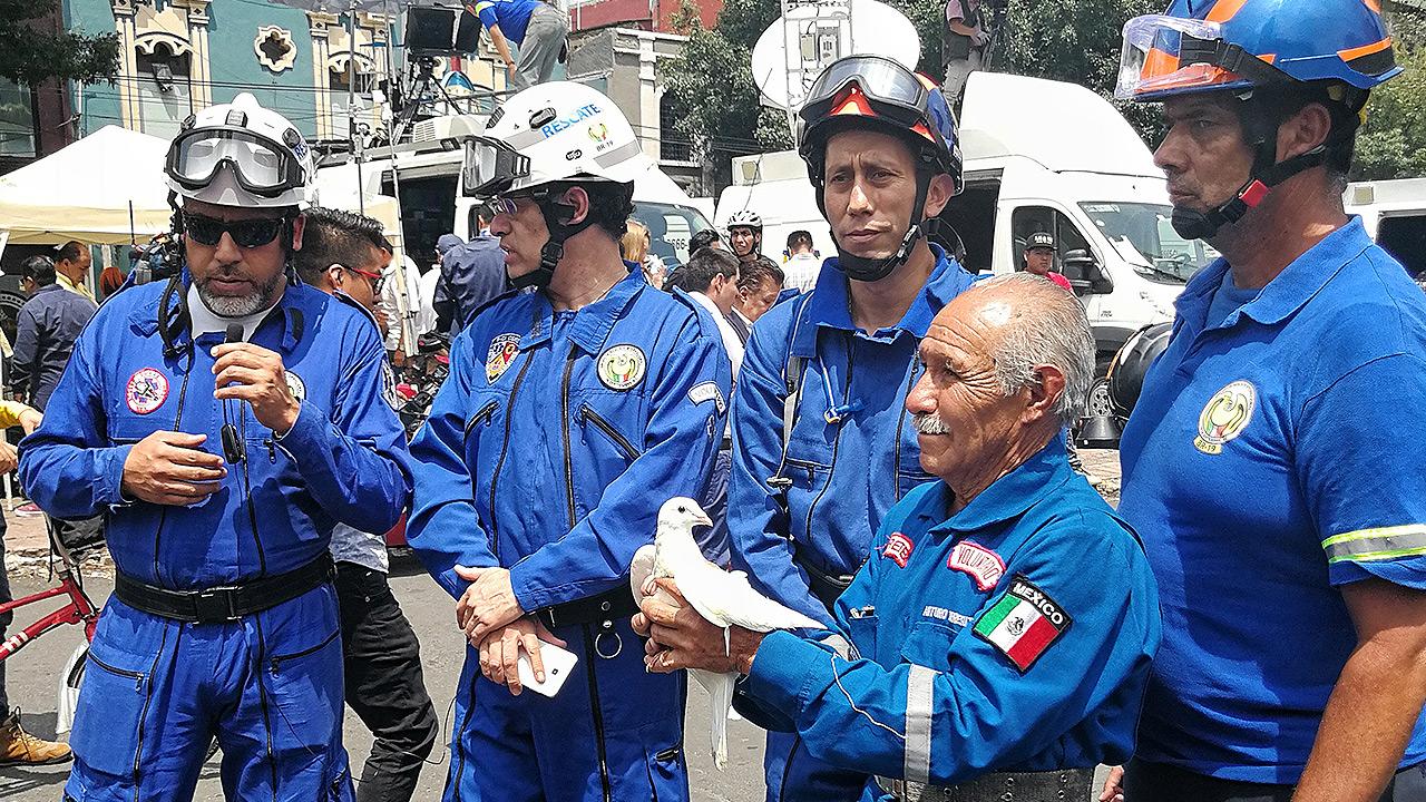 Los héroes de traje azul del S19 que son unos auténticos multinacionales
