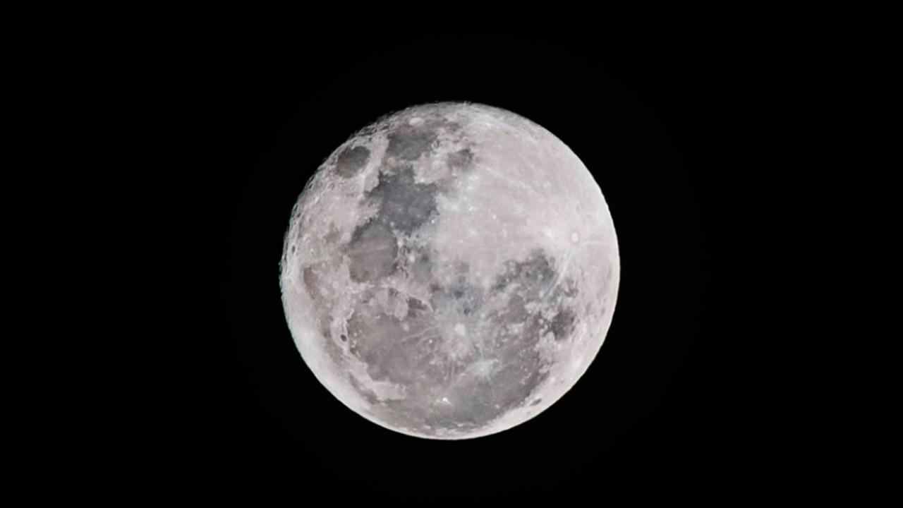 ¿Es falsa la foto en redes sociales de la primera planta que brotó en la Luna?