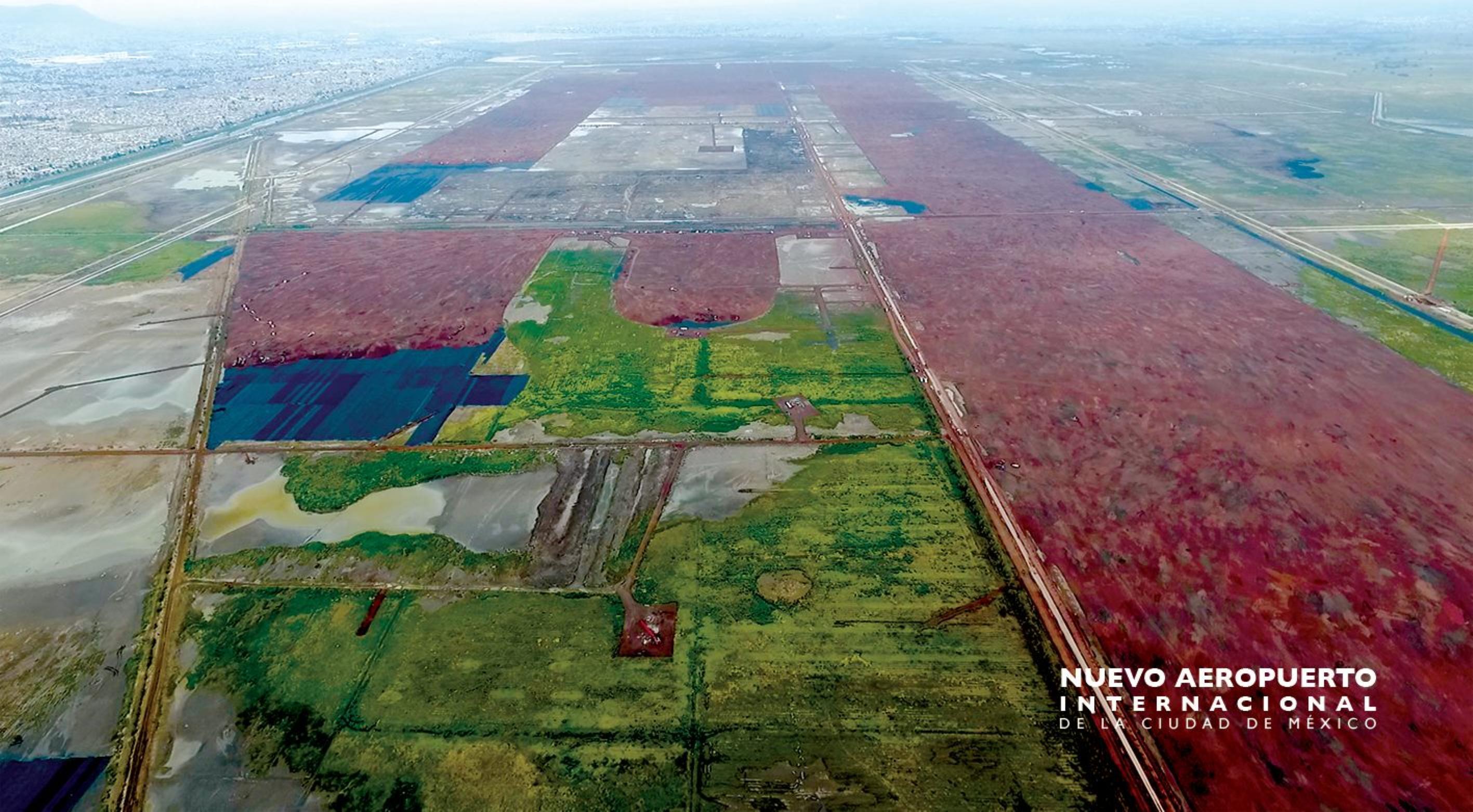 El impacto ambiental del NAICM en 5 puntos, según Greenpeace