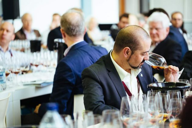 Renueva tu cava: 8 vinos mexicanos medallistas en los Decanter World Wine Awards
