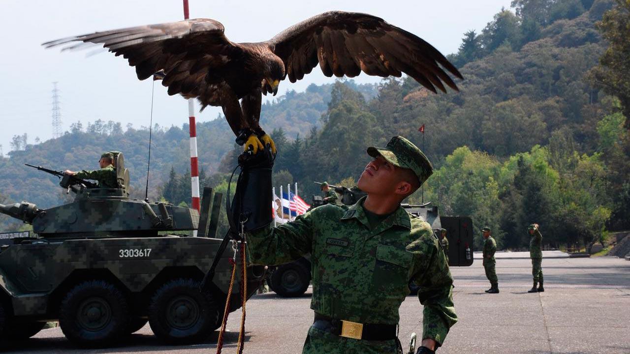 Presentan Plan Nacional de Seguridad; incluye Guardia Nacional