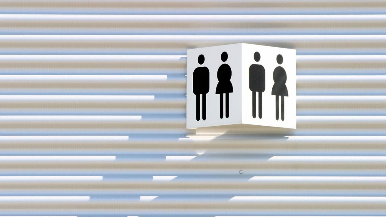 La agenda de género, presente en el Legislativo