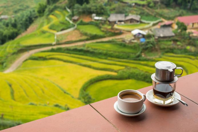 Cinco destinos sólo para amantes del café