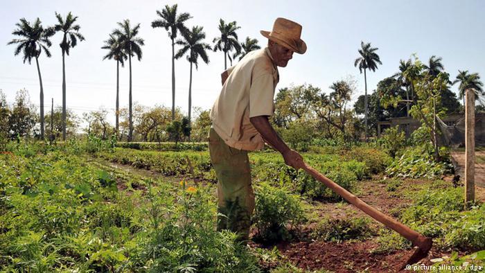 Empresarios de EU quieren sembrar un TLC agrícola con Cuba