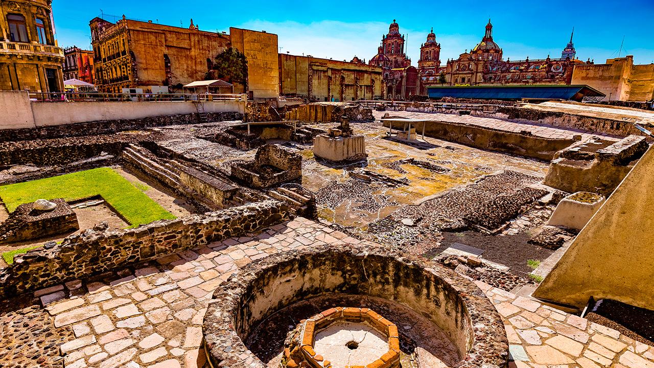 Hallan restos de pepinos de mar en ofrenda mexica del Templo Mayor