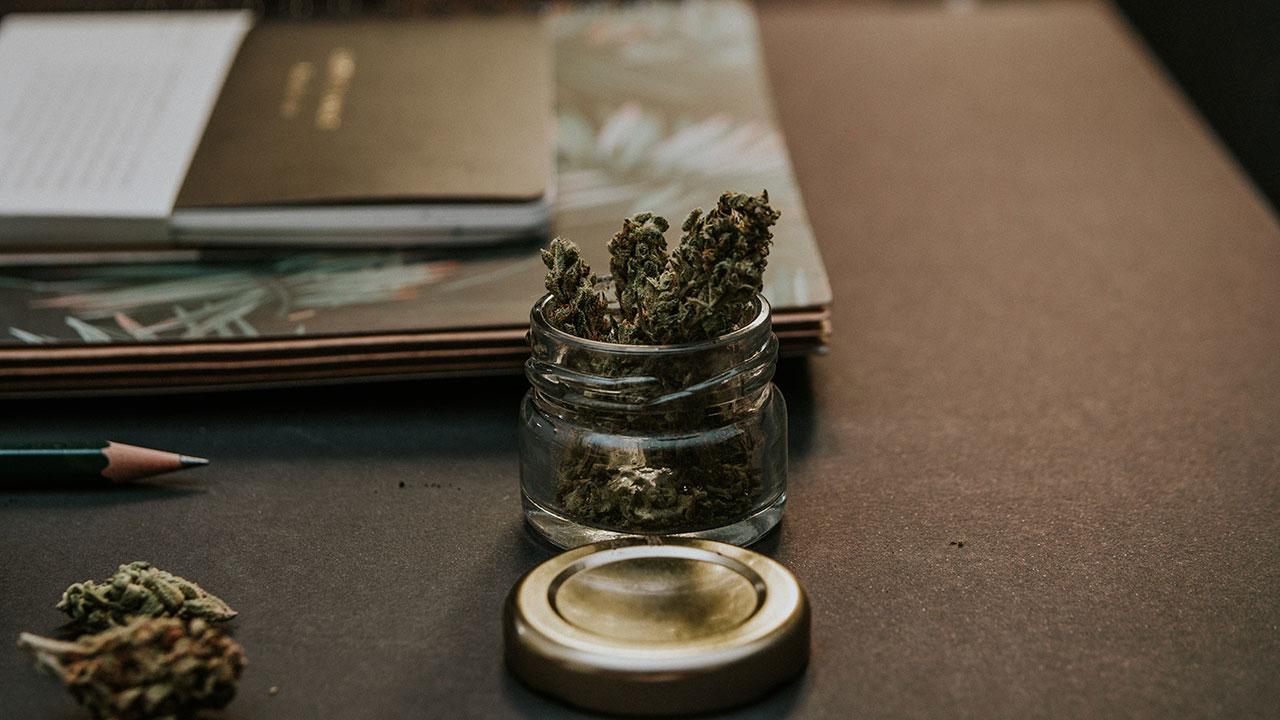 El cannabis viene para quedarse: un mercado de 340,000 mdd