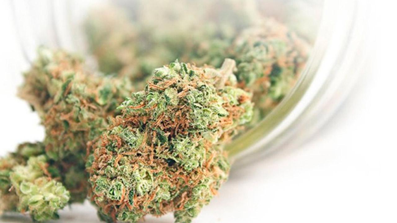 California permitirá crear bancos que operen con dinero de la mariguana
