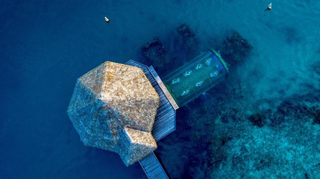 hotel bajo el mar