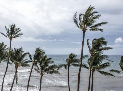 La tormenta tropical Xavier provocará lluvia en gran parte de la república