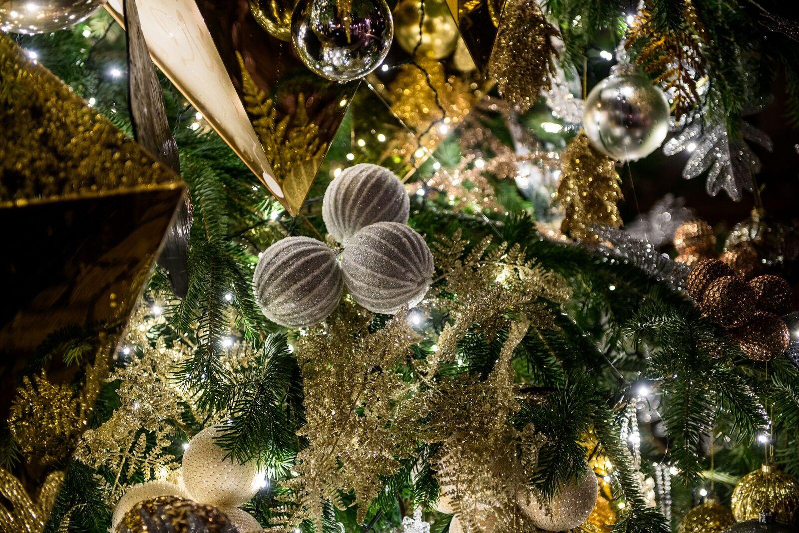 Grisogonio árbol de Navidad