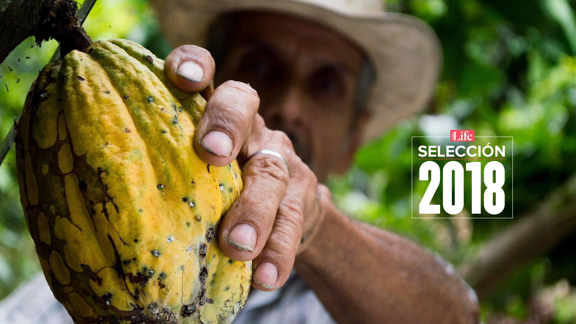Selección Life | México brilla en la premiación chocolatera más grande del mundo