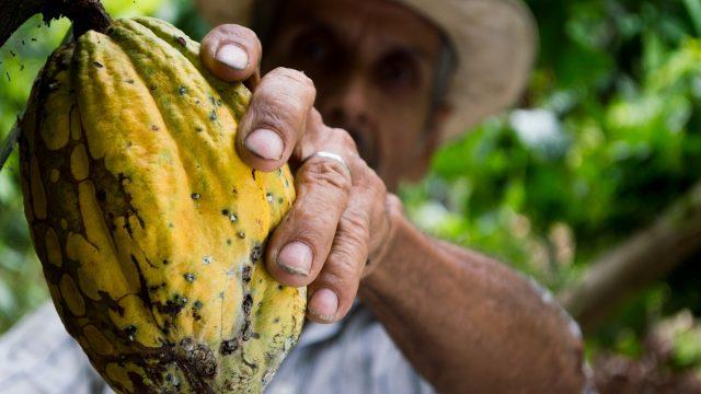 México chocolatera