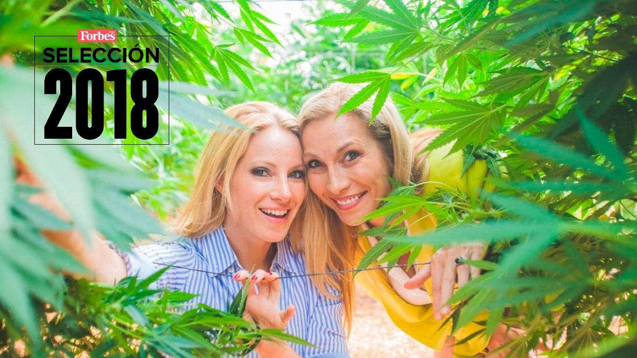 Selección 2018 | Consejos de la reina del cannabis medicinal para iniciar un negocio