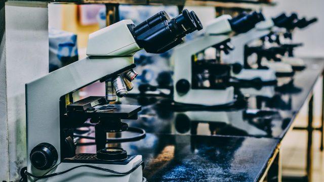 control a la ciencia con desaparición de fideicomisos