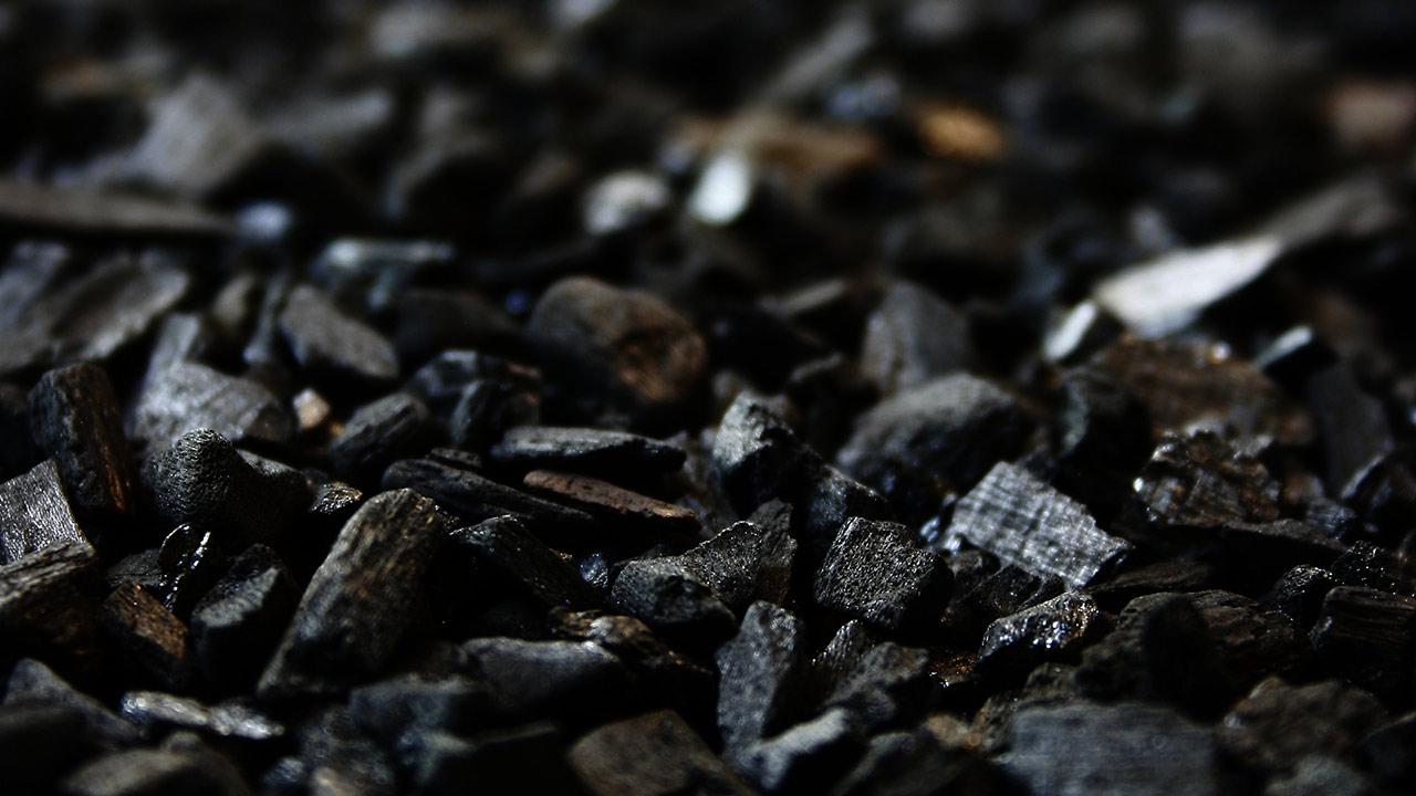 CFE sí prometió compra de carbón: Guadiana