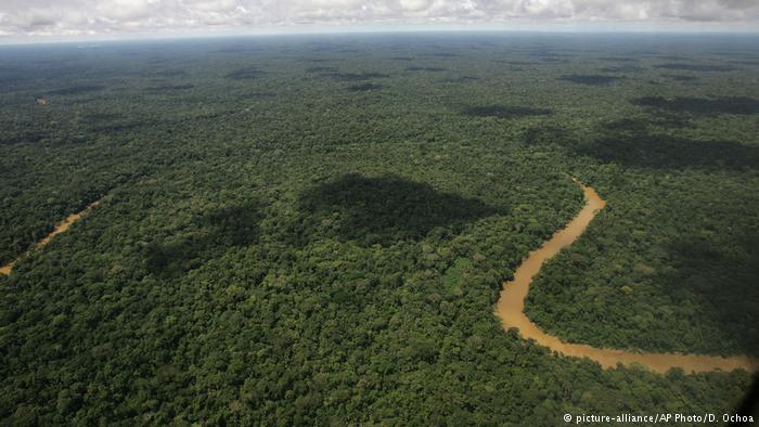 """UE-América Latina: """"Que la destrucción de la selva no sea lucrativa"""""""