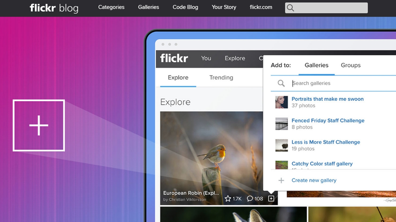 Si no pagas por tus fotos, Flickr comenzará a borrar si almacenas más de 1,000