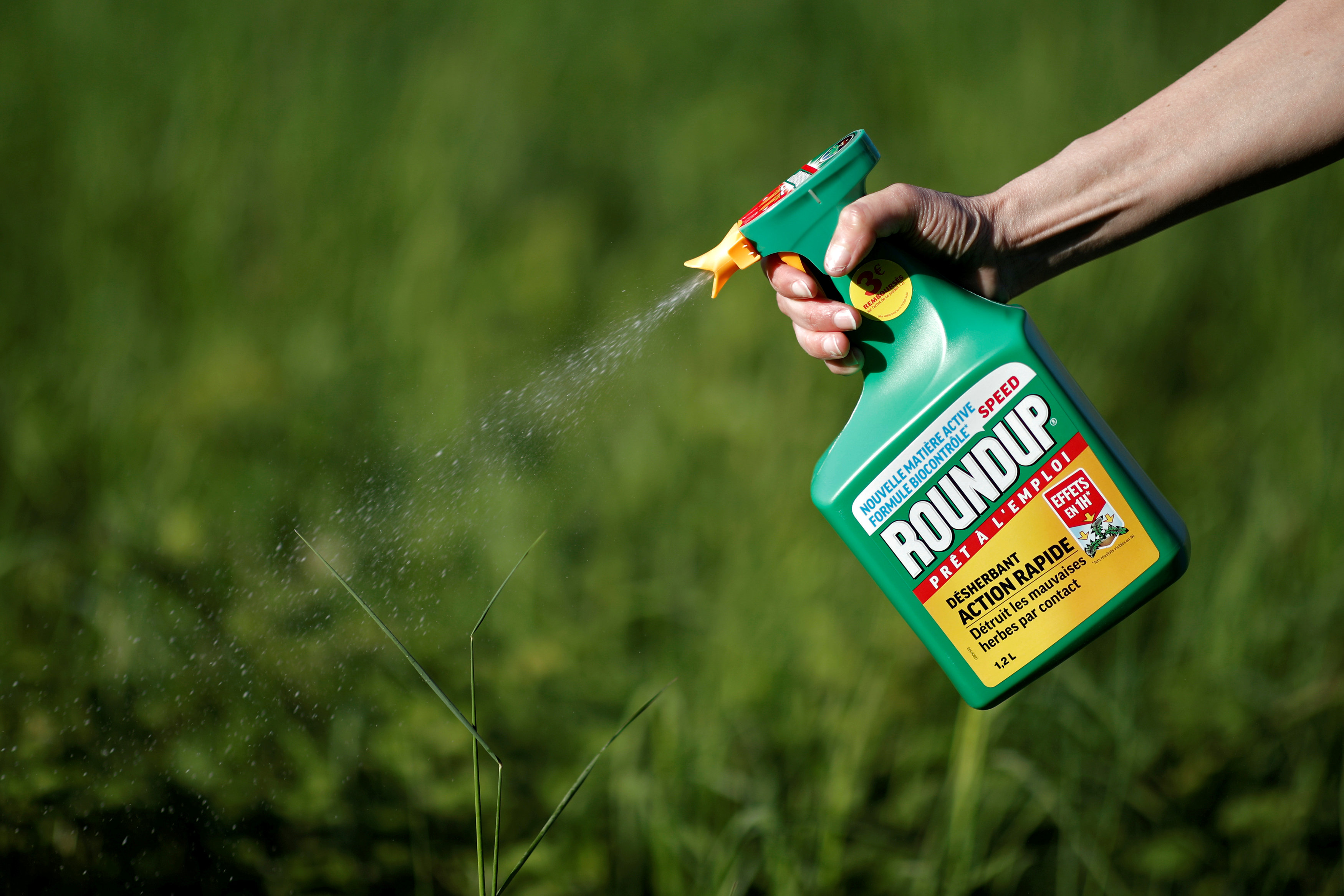 Monsanto debe pagar 81 mdd por efectos cancerígenos de sus productos