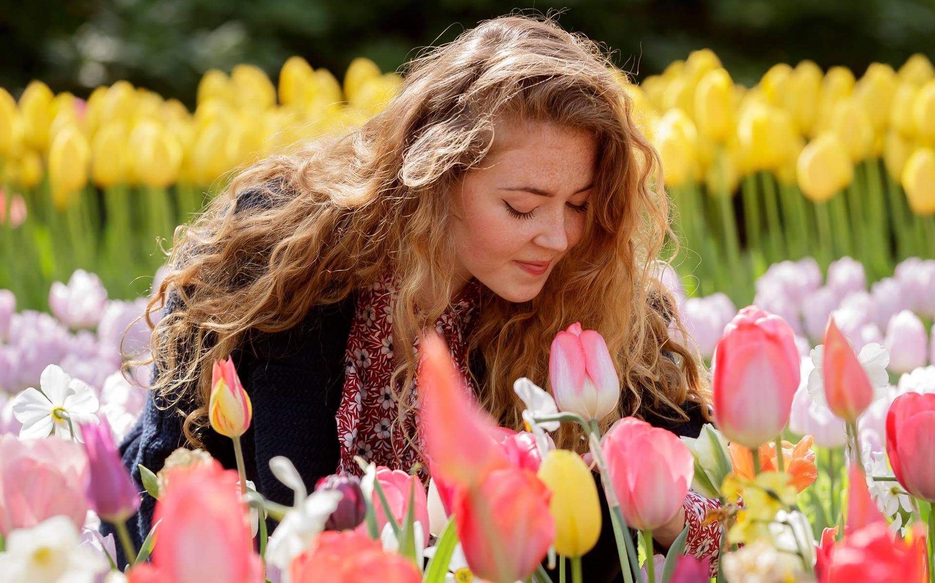 Millones de tulipanes visten a Holanda de primavera