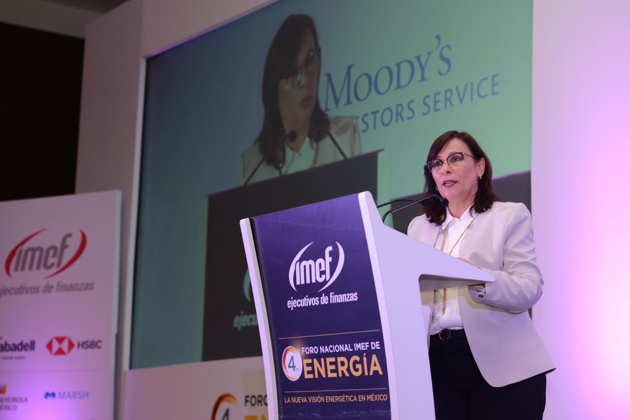 Nahle critica mercado eléctrico y subastas, pero abre puerta a APP en transmisión