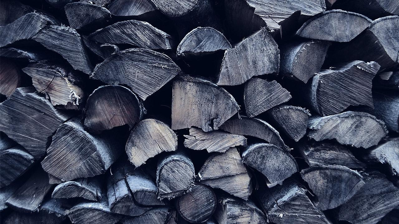 Denuncian a Farmacias del Ahorro por tala ilegal de 1,804 árboles en México