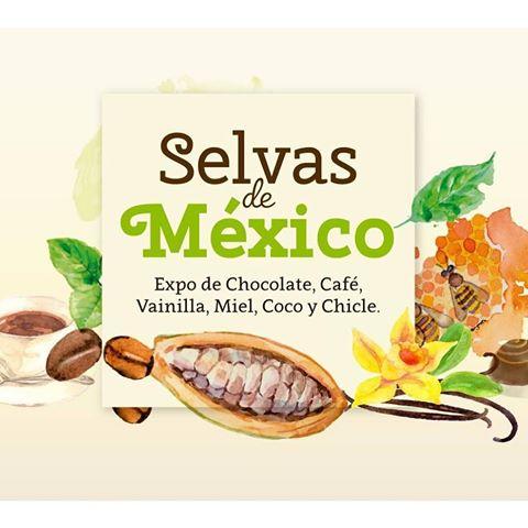 ciudad de México fin de semana qué hacer