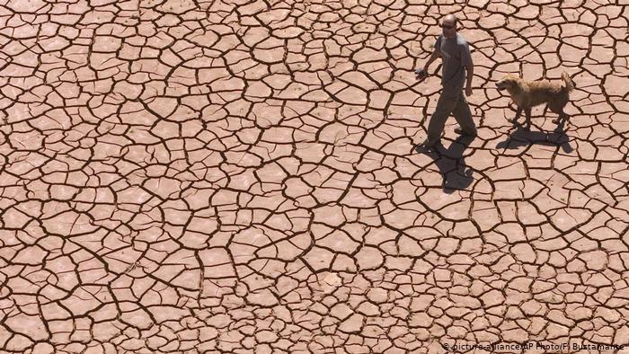 Biodiversidad: el mundo se muere, queda poco tiempo y hay que actuar